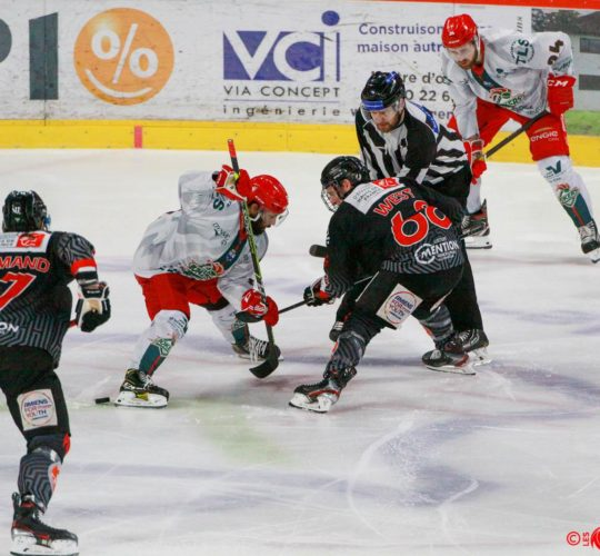 2ème Journée Synerglace Ligue Magnus – Amiens vs Cergy-Pontoise
